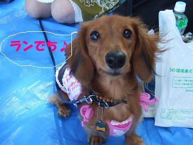 blog070908biwako06.jpg