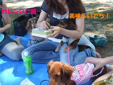 blog070908biwako07.jpg