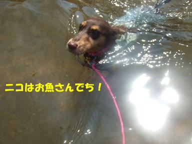 blog070908biwako10.jpg