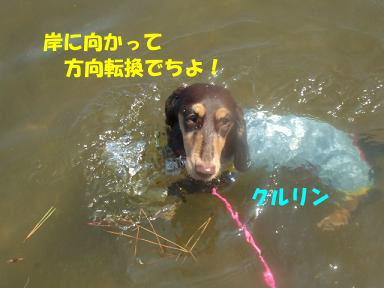 blog070908biwako11.jpg