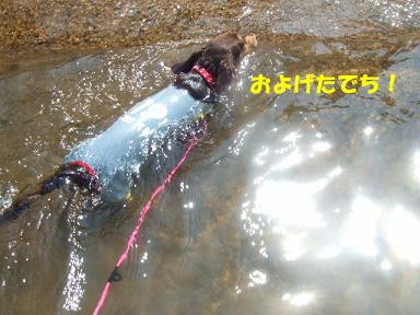 blog070908biwako13.jpg