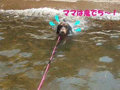 blog070908biwako15.jpg