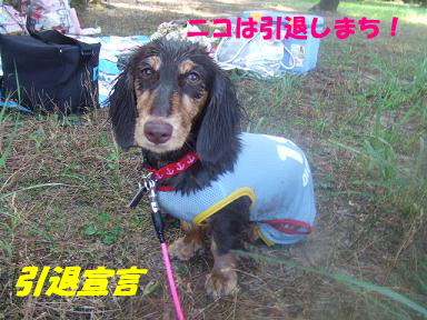 blog070908biwako23.jpg