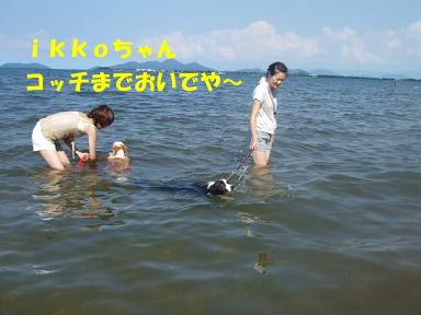 blog070908biwako24.jpg