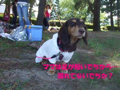 blog070908biwako25.jpg