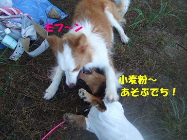 blog070908biwako26.jpg