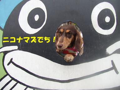 blog070908biwako27.jpg