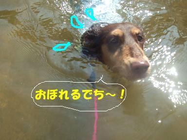 blog070908biwako34.jpg
