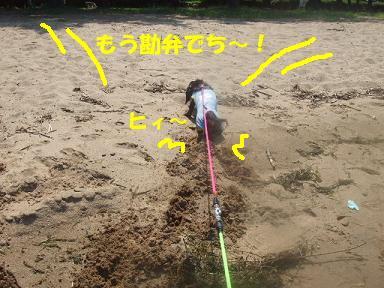 blog070908biwako35.jpg