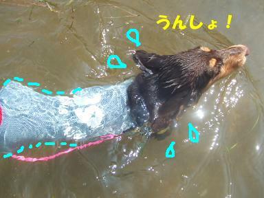 blog070908biwako36.jpg