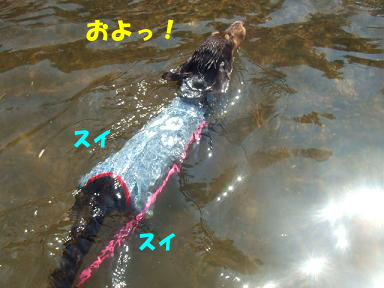 blog070908biwako37.jpg