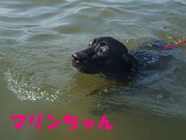 blog070908biwako38.jpg