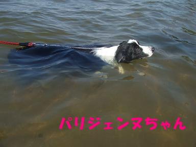 blog070908biwako39.jpg