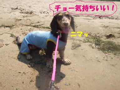 blog070908biwako40.jpg