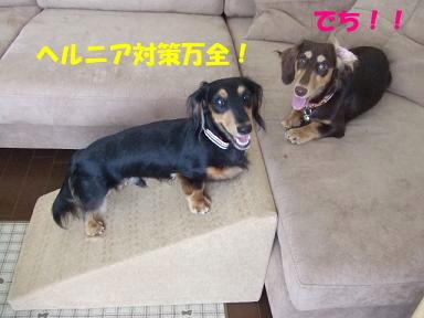 blog070909saka05.jpg