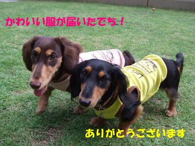 blog070909saka06.jpg