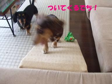 blog070909saka11.jpg
