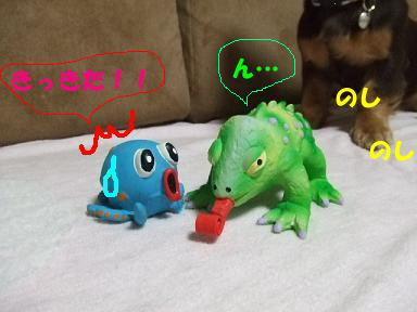 blog070910taco02.jpg