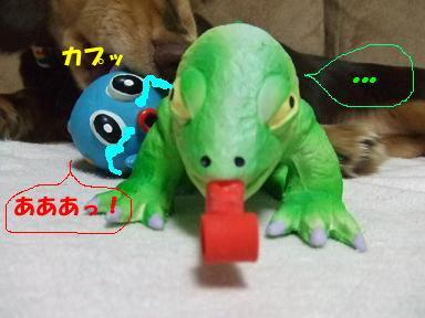 blog070910taco04.jpg