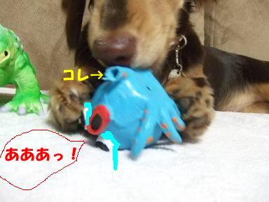blog070910taco05.jpg