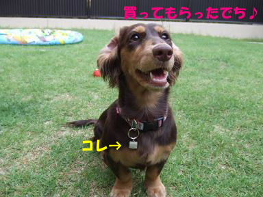 blog070913wan02.jpg