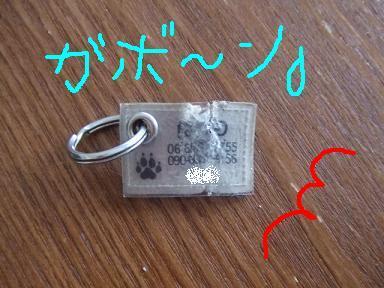 blog070913wan05_20070914213245.jpg