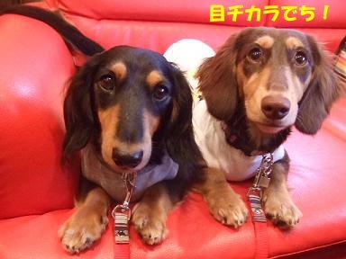 blog070915doyou03.jpg