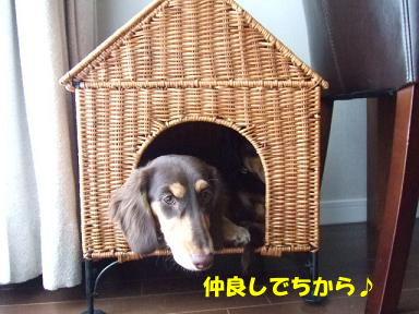 blog070915ie01.jpg