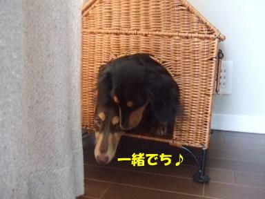 blog070915outi10.jpg