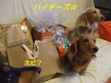 blog070917purin10.jpg