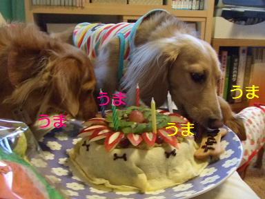 blog070917purin12.jpg