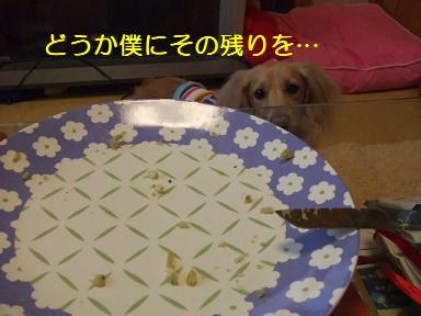 blog070917purin21.jpg