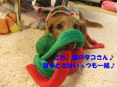 blog070917purin26.jpg