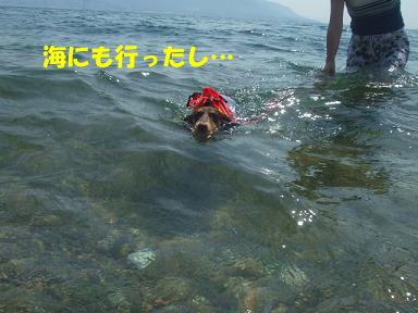 blog070918nico04.jpg