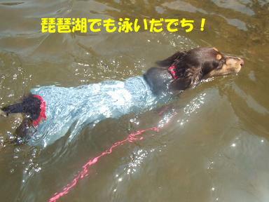 blog070918nico05.jpg