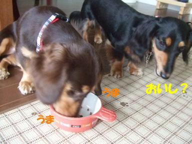 blog070921monita01.jpg