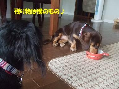 blog070921monita02.jpg