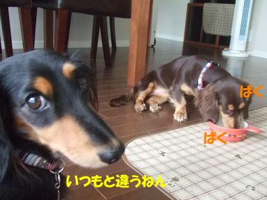 blog070921monita04.jpg