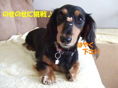 blog070921monita07.jpg