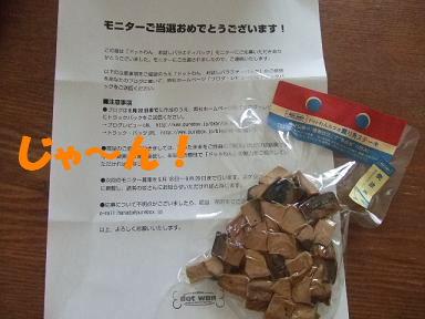 blog070921monita08.jpg