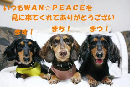 blog071003wan02.jpg