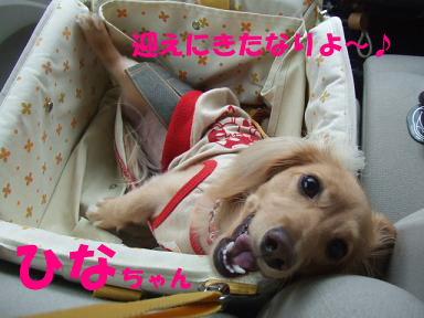 blog2honn01.jpg