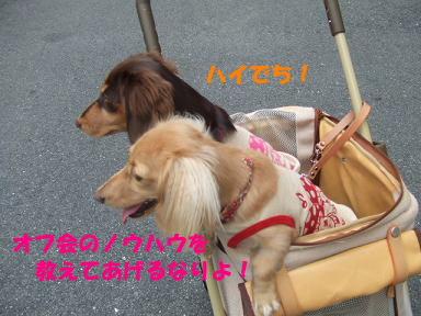blog2honn02.jpg