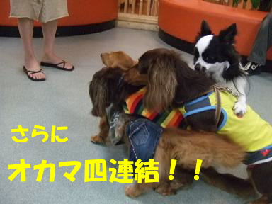 blog2honn08.jpg