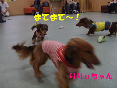 blog2honn16.jpg