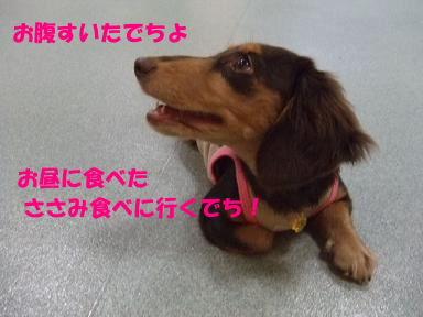 blog2honn19.jpg