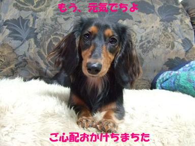 blog315mone05.jpg