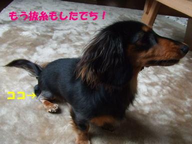 blog315mone06.jpg