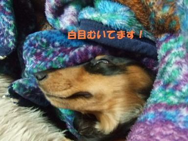 blog315mone10.jpg