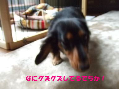 blog315mone12.jpg